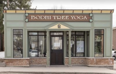 Bodhi Tree Yoga Centre